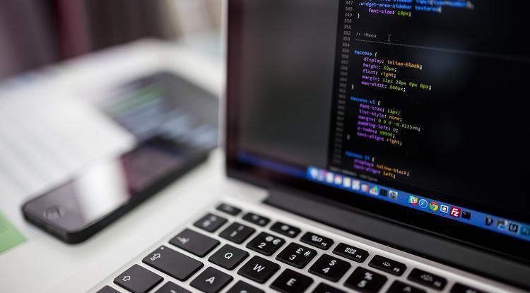 Белгородцы смогут бесплатно получить IT-профессию