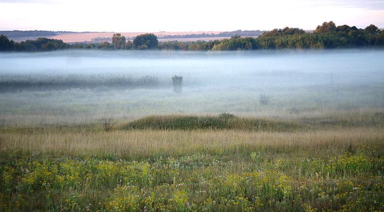 Белгородская область заняла 2-е место в Национальном экологическом рейтинге